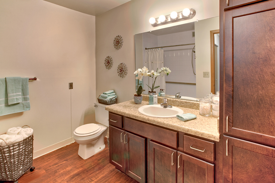Ambrose_Ridge-Apartment-Bathroom